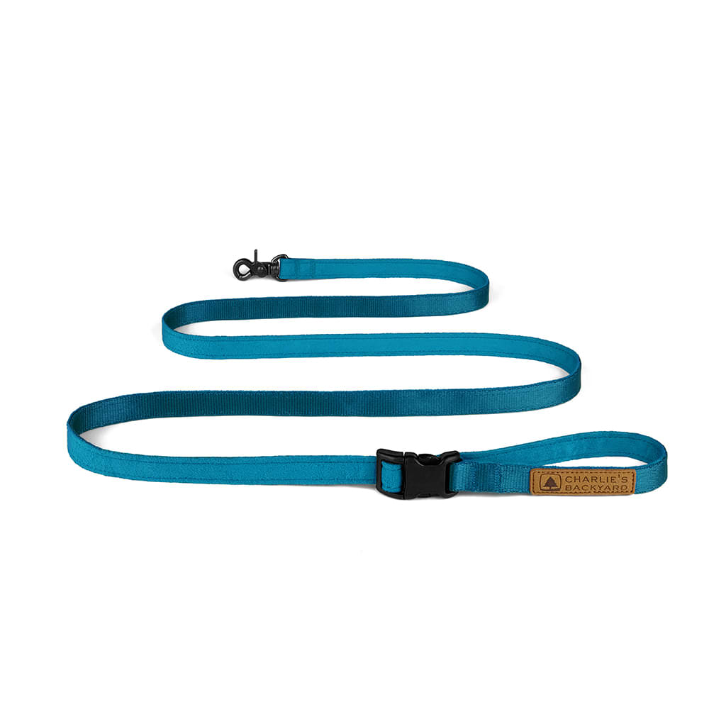 EASY LEASH / BLUE