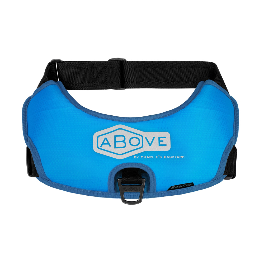 ABOVE HARNESS LITE / BLUE