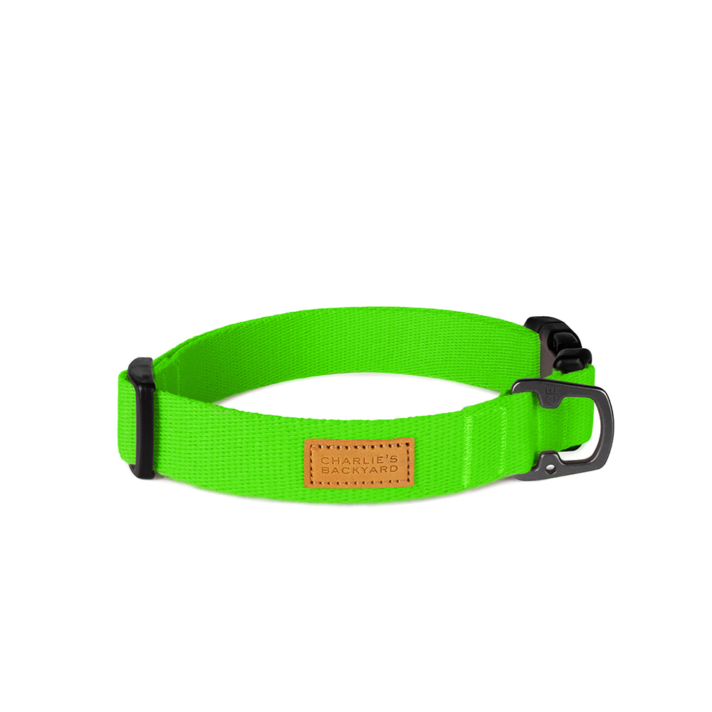 FIELD COLLAR / NEON GREEN