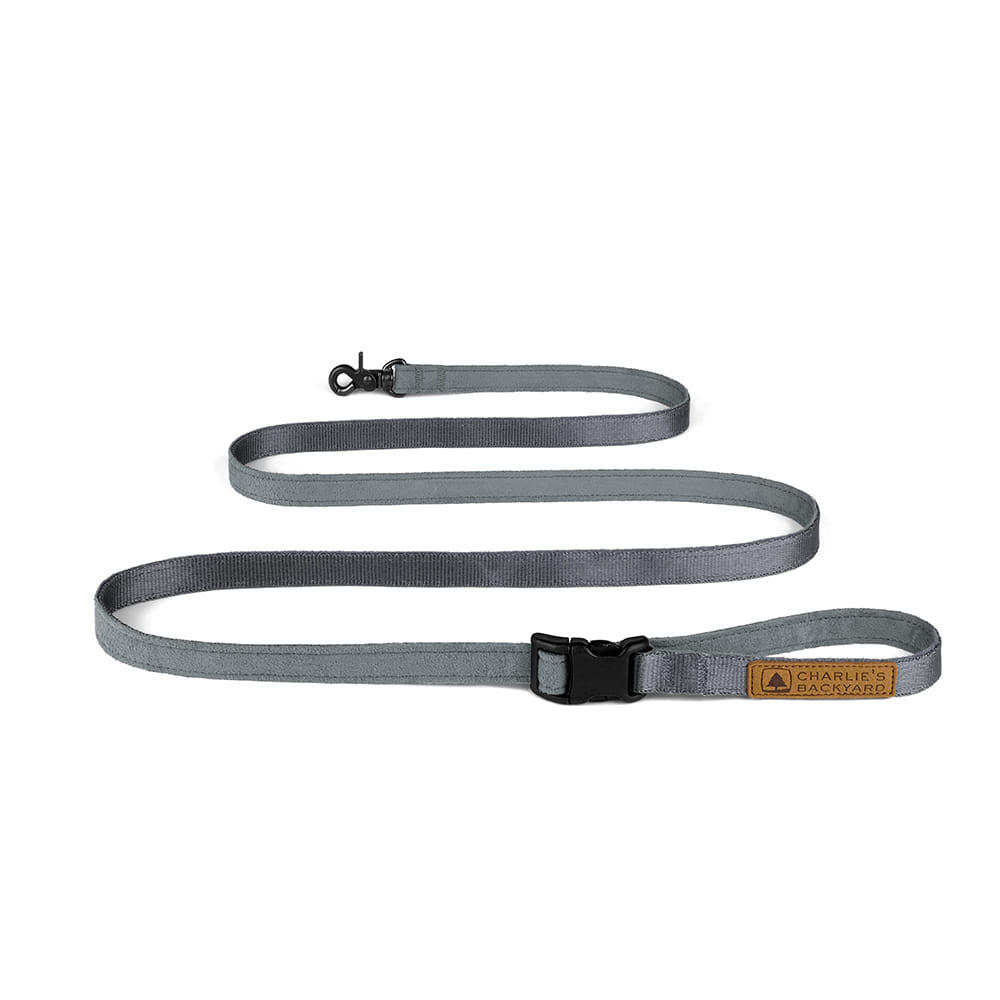 EASY LEASH / GRAY