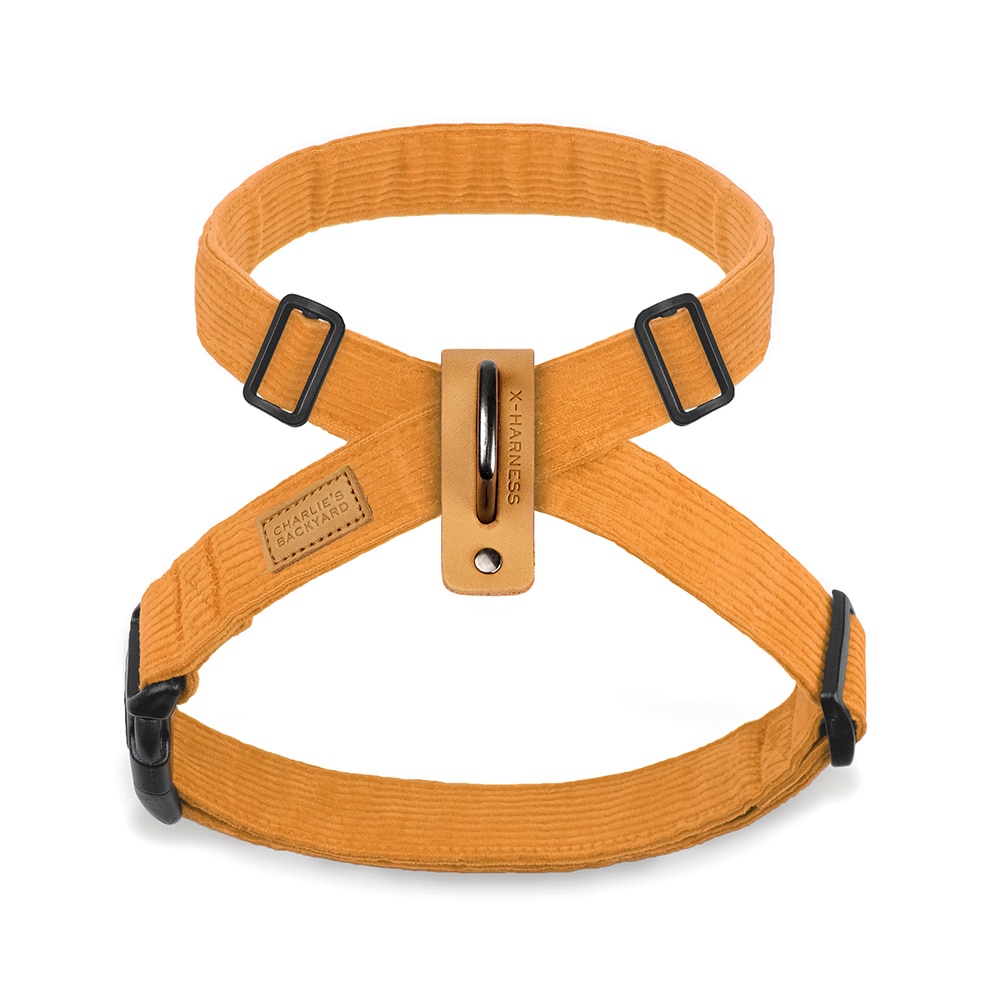 FIELD X-HARNESS / YELLOW