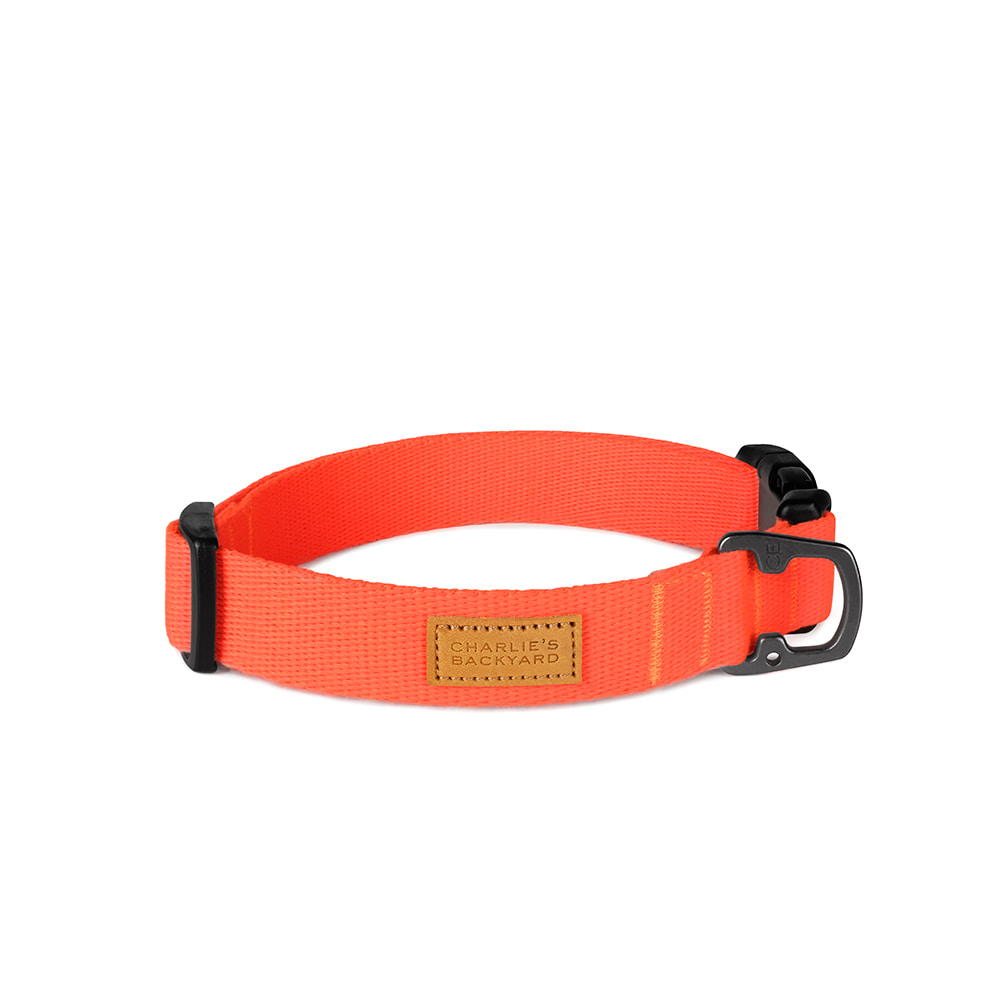 FIELD COLLAR / NEON ORANGE