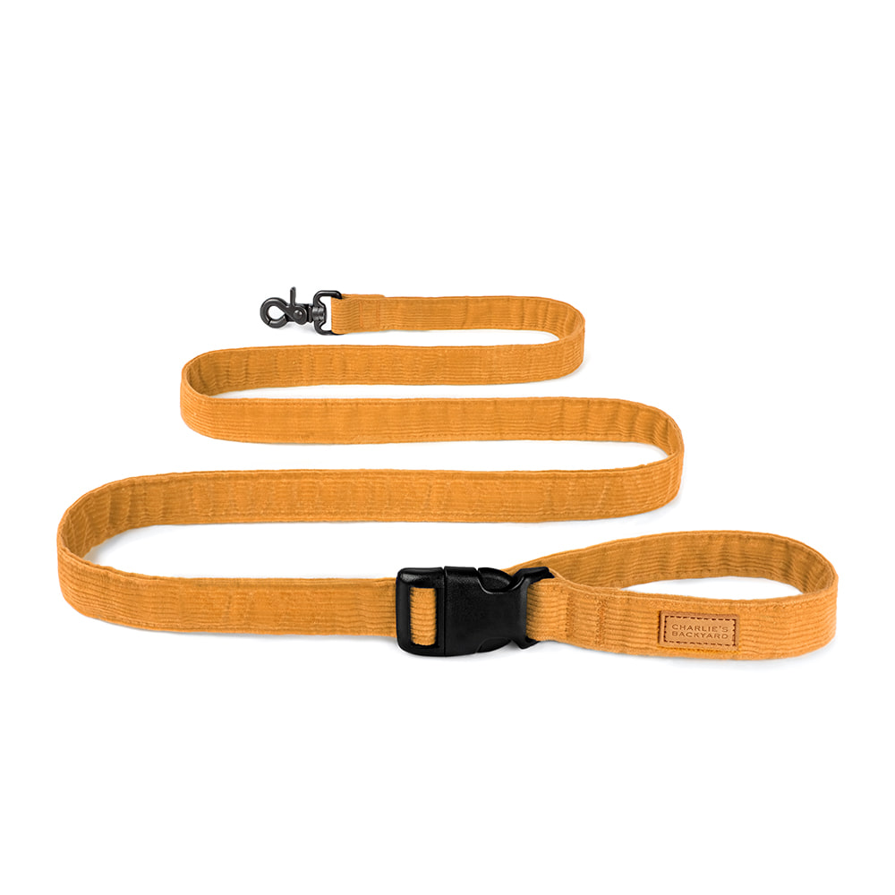 FIELD LEASH / YELLOW