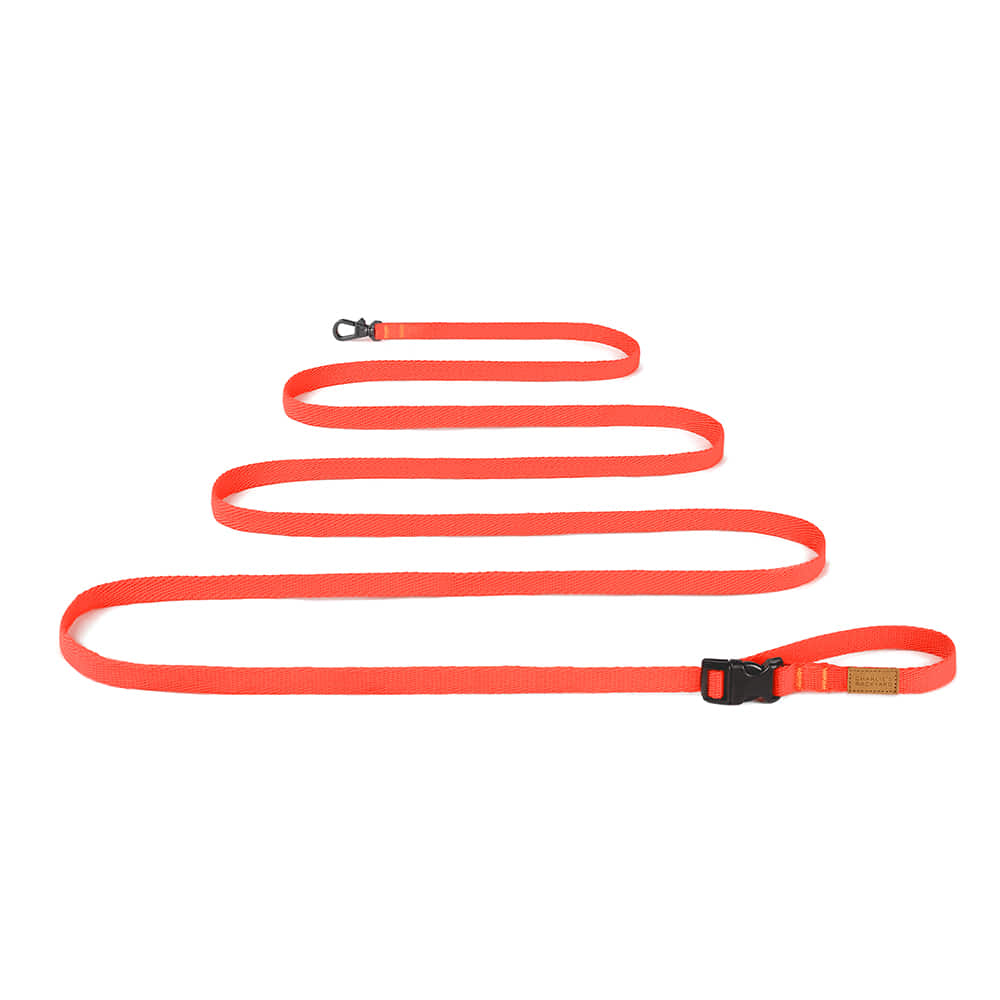 FIELD LONG LEASH 3M 5M / NEON ORANGE
