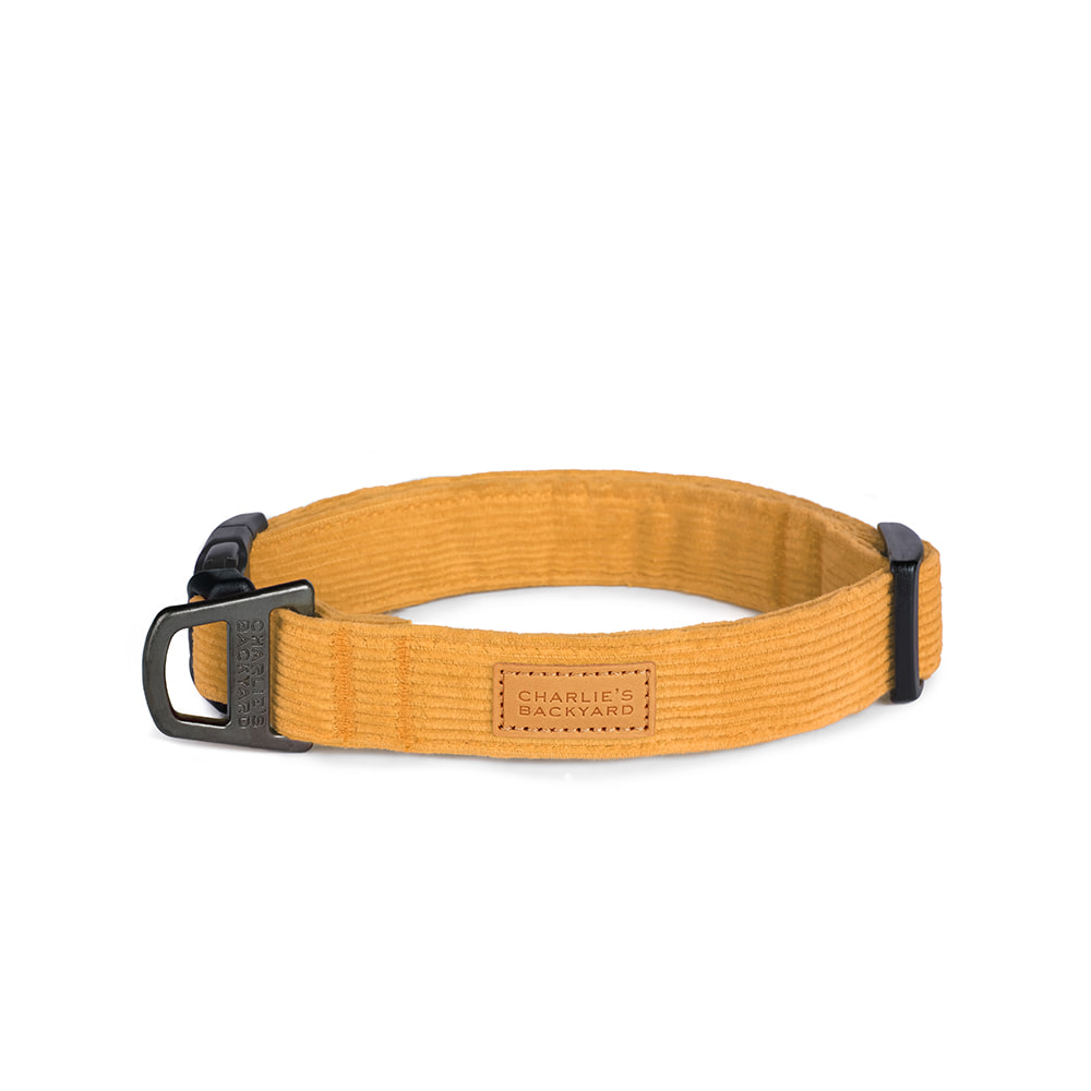FIELD COLLAR / YELLOW